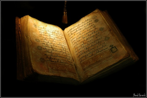 The_Holy_Book_by_DJVue